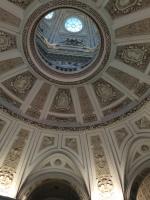 Natural History tavan detayı