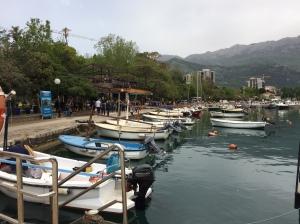 montenegro 337