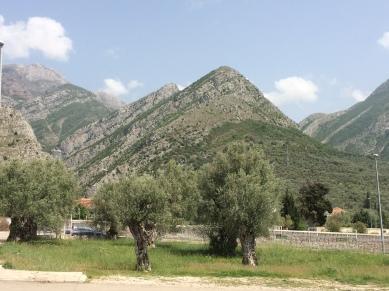 montenegro 562