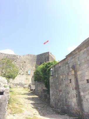 montenegro 593